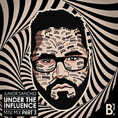 Under The Influence (Mini Mix, Pt. 3) by Various Artists