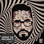 Under The Influence (Mini Mix, Pt. 2) by Junior Sanchez