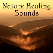 Nature Healing Sounds – Soothing Sounds to Relax, Easy Listening, New Age Rest, Healing Melodies by Nature Tribe