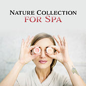 Nature Collection for Spa – Relaxing New Age for Wellness, Healing Nature, Inner Harmony, Deep Sleep, Meditation, Massage Music by Calming Sounds