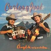 Ángel De Mis Anhelos by Carlos y José