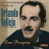 Rosa Peregrina by Orlando Vallejo