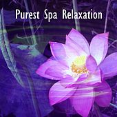 Purest Spa Relaxation by Spa Relaxation