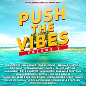 Push The Vibes vol.2 by Various Artists