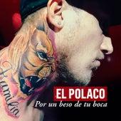 Por un Beso de Tu Boca by Polaco