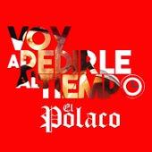 Voy a Pedirle al Tiempo by Polaco