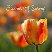 Blooms of Spring by Nature Sounds