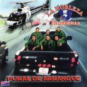 Puras de Arranque by La Nobleza De Aguililla