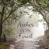 Arches of the Forest by Nature Sounds