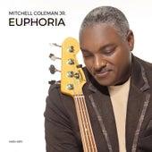 Euphoria (Radio Edit) by Mitchell Coleman Jr