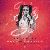 Ya Yo Se by Mark B