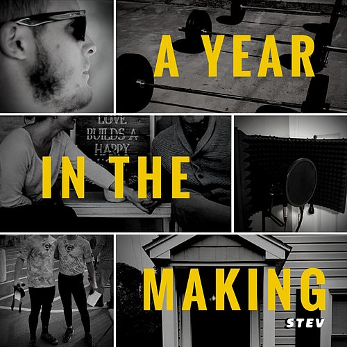 A Year in the Making by Stev