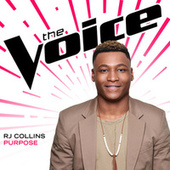 Purpose (The Voice Performance) by RJ Collins