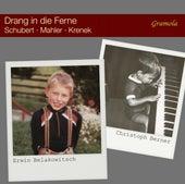 Drang in die Ferne by Erwin Belakowitsch