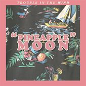 Pineapple Moon by Trouble in the Wind