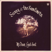 Mr. Brown Eyed Soul by Sunny & The Sunliners