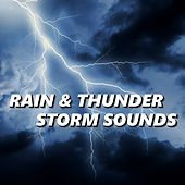 Rain & Thunder Storm Sounds by Rain