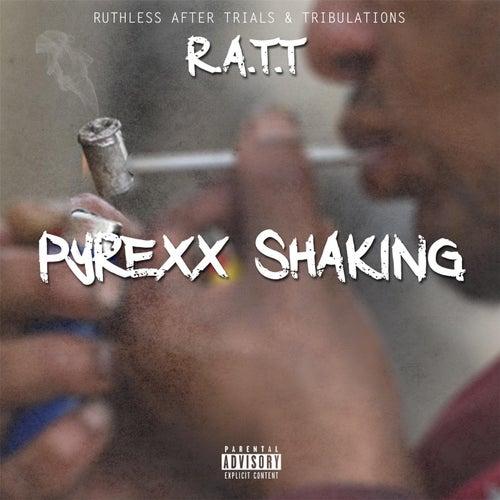 Pyrex Shakin by Ratt
