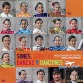 Sones, Sonatas, Danzas y Danzones by Makochi Dulcemelos