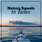 Nature Sounds to Relax – Healing Nature Sounds, Relaxing Therapy, Calm Down & Relax, Stress Free by New Age
