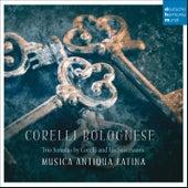 Corelli Bolognese - Trio Sonatas by Corelli and his Successors von Musica Antiqua Latina