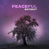 Peaceful Spirit – Relaxing Music for Inner Silence, Peaceful Sounds to Calm Down, Spirit Journey, Relax & Meditation by Meditation Awareness