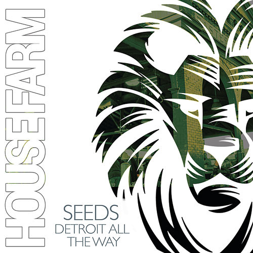 Detroit All the Way by The Seeds