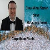 Evolution... von Dinu-Mihai Stefan