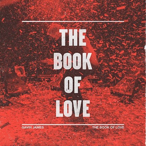 The Book of Love de Gavin James