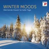 Winter Moods - Wärmende Klassik für kalte Tage von Various Artists