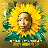 Natural Born Chillers 2 by Various Artists