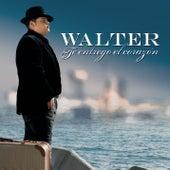 Te Entrego El Corazon by Walter