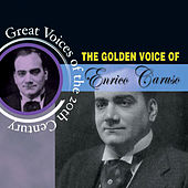 Play & Download Great Voices Of The 20th Century by Various Artists | Napster