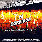 Play & Download 24 Corridos - Puro Corrido Chicotiao Compa! by Various Artists | Napster