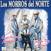 Si No Vas A Volver by Los Morros Del Norte