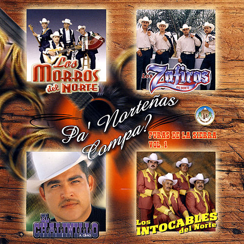 Pa' Norteñas Compa? - Puras De La Sierra Vol. 1 by Various Artists
