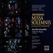 Play & Download Beethoven: Missa Solemnis & Egmont Overture by Ama Deus Ensemble | Napster