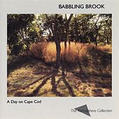 A Day On Cape Cod: Babbling Brook by The Atmosphere Collection
