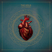 Play & Download Sun Gangs by The Veils | Napster