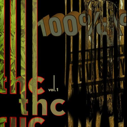 2 High Chronicles: 100% THC de Various