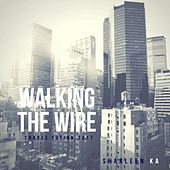 Walking the Wire (Charts Fusion 2017) by Sharleen Ka