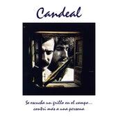 Se Escucha un Grillo en el Campo... Contri Más a una Persona by Candeal
