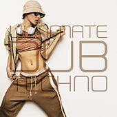 Ultimate Dub Techno by Various Artists
