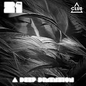A Deep Dimension, Vol. 21 by Various Artists