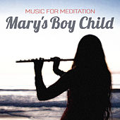 Mary's Boy Child by Music For Meditation