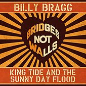 King Tide and the Sunny Day Flood by Billy Bragg