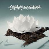Hikari by Oceans Ate Alaska