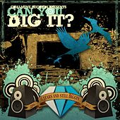 Can You Dig It? by Various Artists