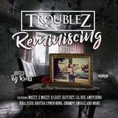 Reminiscing von Troublez