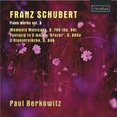 Franz Schubert: Piano Works, Vol. 9 by Paul Berkowitz